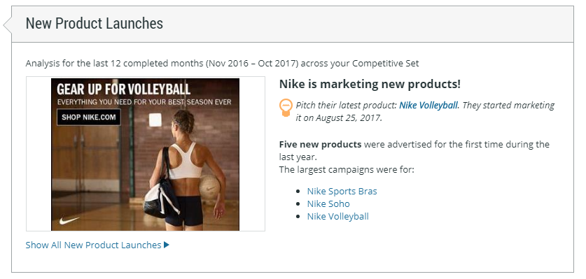 NikeVolleyball.png
